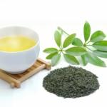 花粉症に効くお茶『緑茶』はなぜ効く?その理由を3個紹介!